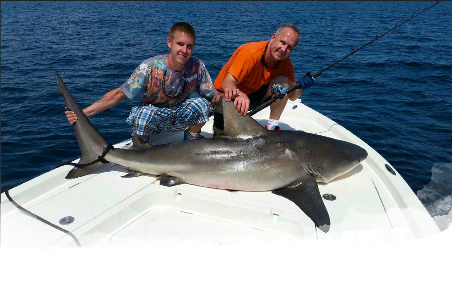 Top rated shark fishing charters in florida world class for Shark fishing in florida